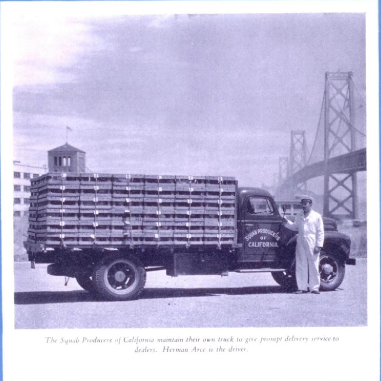 August 1946. Co-op member Herman Arce pictured with a SPOC delivery truck underneath the Golden Gate bridge.
