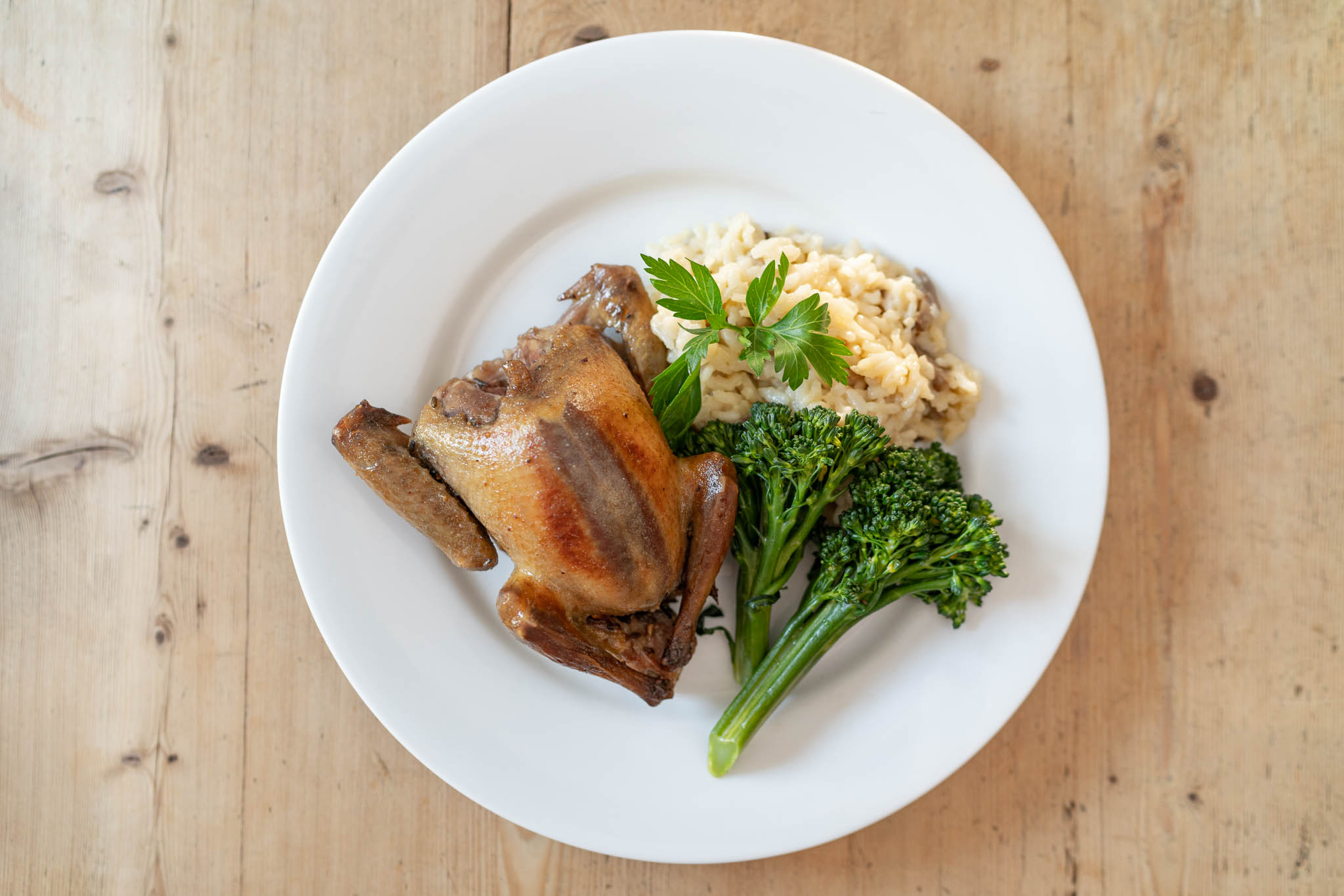 Fennel Roasted Squab With Orzo And Broccolini